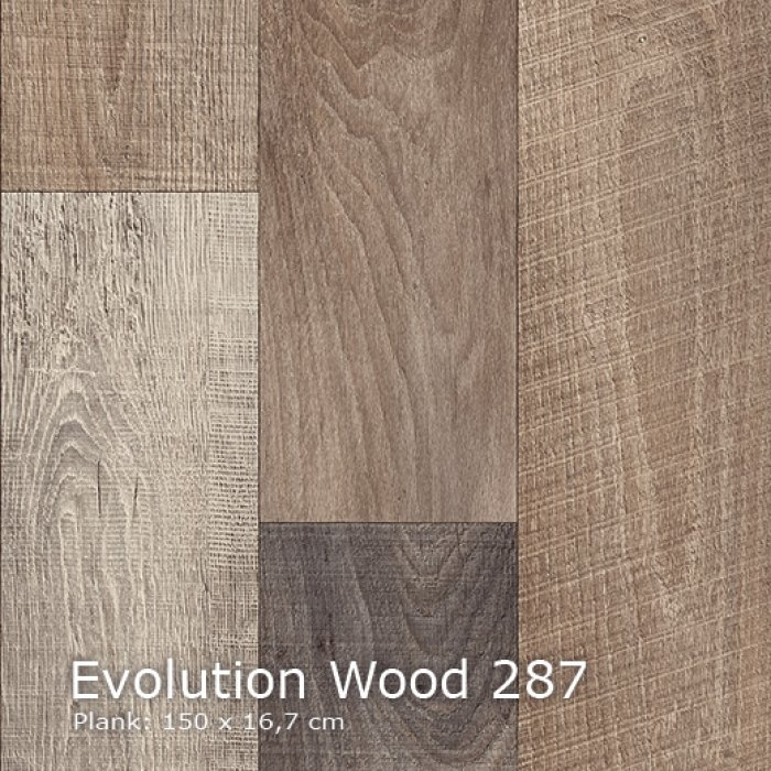 Evolution Wood-287