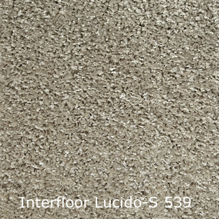 Lucido S-539