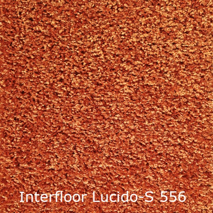 Lucido S-556