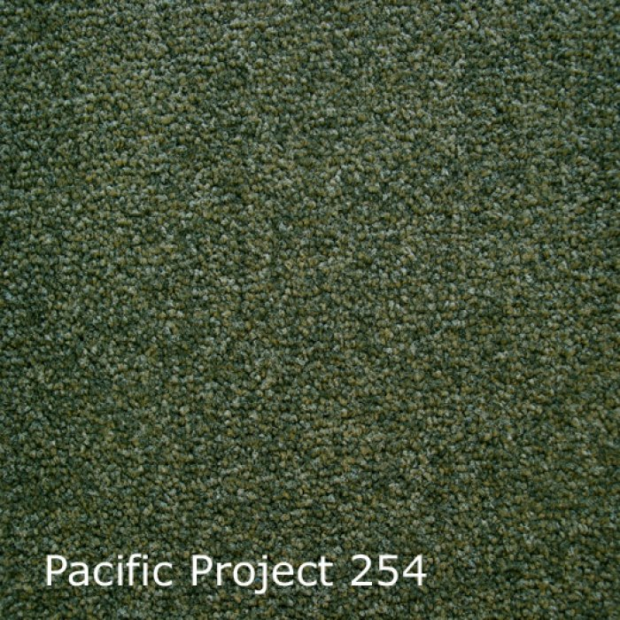 Pacific-254
