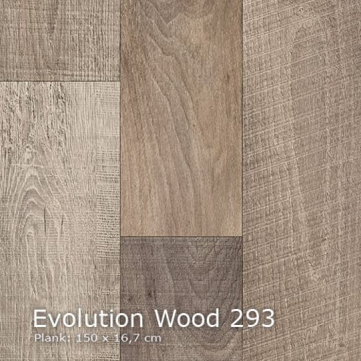 Evolution Wood-293