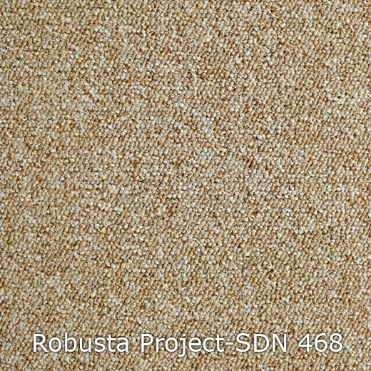 Robusta Project-468