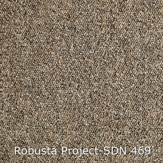 Robusta Project-469