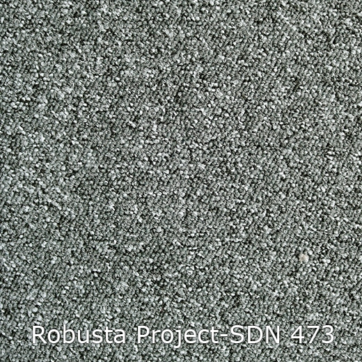 Robusta Project-473