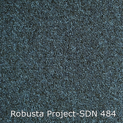 Robusta Project-484